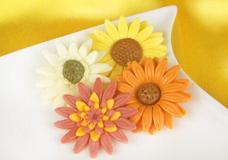 Modellier- & Blütenpasten