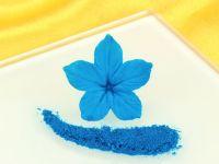 Puderfarbe Royal Blue 2g