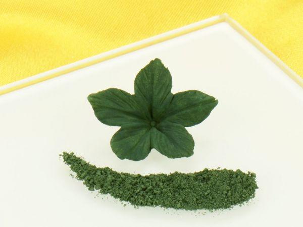 Puderfarbe Olive Green 2,5g