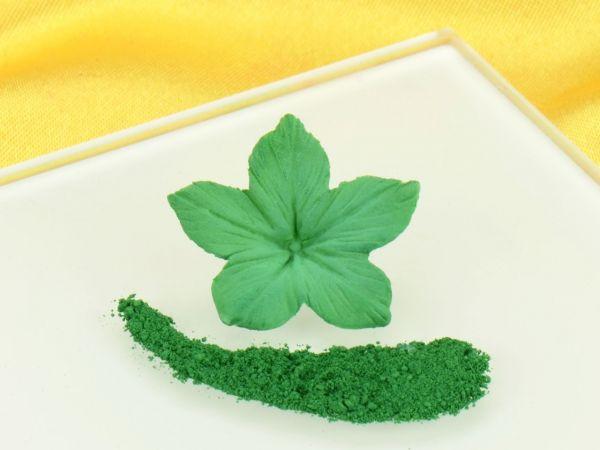 Puderfarbe Ivy Green 3g