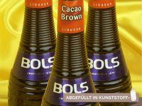Cacao-Likör braun 24% vol 50ml für Pralinenfüllung