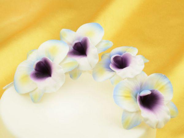 Feinzucker Blütenzweig Orchid spray