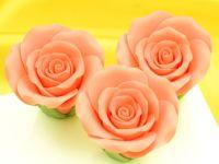 Rosen 50mm lachs Zucker 3 Stück