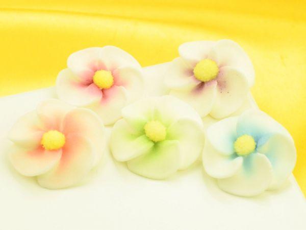 Apfelblüten bunt Zucker 5 Stück