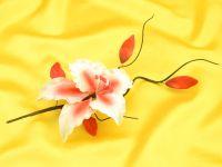 Feinzucker Bouquet Rubrum Lily